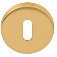 Basics sleutelgat rozet PVD mat goud