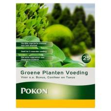 Pokon groene planten voeding - 1KG